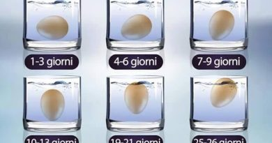 Come calcolare l'età dell'uovo